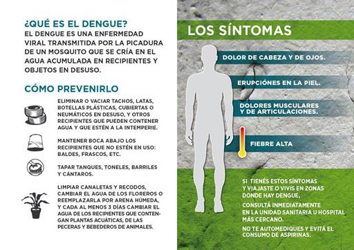Alerta en la Ciudad: confirman 19 casos de dengue autóctono